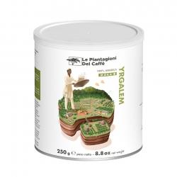 Le Piantagioni Selezione Yrgalem - Malet kaffe