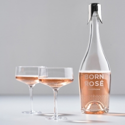 Zone Rocks Coupe/Cocktail Glas 27 cl 2 st